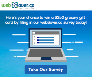 webSaver_Survey2020