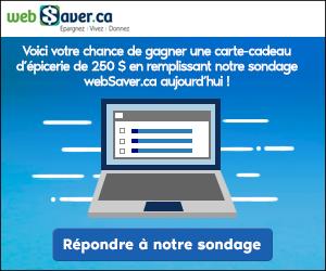 webSaver_Survey2020